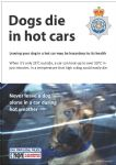 NYP16-0157 - Poster: Dogs die in hot cars
